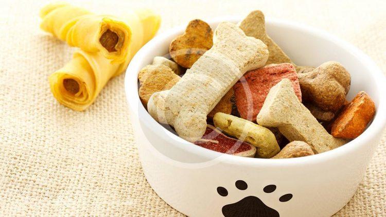 Köpek Gıdalarıyla İlgili Şehir Efsaneleri