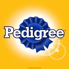 Pedigree Marka İncelemesi